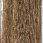 #14 Light Ash Brown